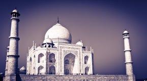 india mahal taj Arkivfoto