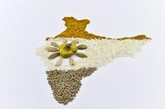 india map2 krydda Arkivbild