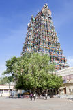 India - Meenakshi Royalty Free Stock Image