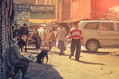 India miasteczka ulica Zdjęcie Royalty Free