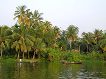 India.Palm tree tropical forest in backwaters destinations of Ke Stock Photos