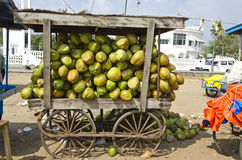 India, Puducherry, coconuts fruits  in wagon on sale Royalty Free Stock Image