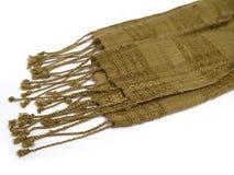 india scarf royaltyfri foto