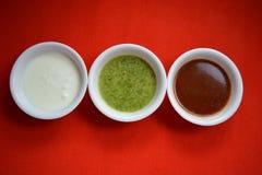 Indiańscy tradycyjni chutneys Zdjęcia Royalty Free