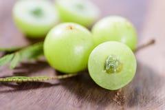 Indiańska agrestowa owoc Obrazy Stock