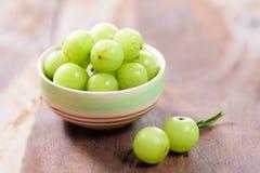 Indiańska agrestowa owoc w pucharze Zdjęcie Royalty Free