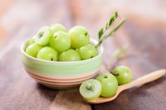 Indiańska agrestowa owoc w pucharze Zdjęcia Stock