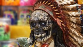 Indiańska czaszka Obrazy Stock