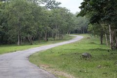Indiańska droga Zdjęcie Royalty Free