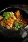 Indiański curry II Fotografia Stock