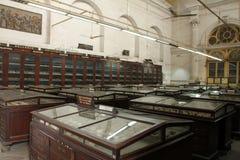 Indiański muzeum Kolkata Zdjęcie Royalty Free