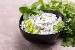 Indiański ogórkowy raita z jogurtem, mennica, cilantro Grecki tzatzi Fotografia Royalty Free