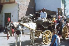1977. India. Udaipur. A horse carriage with bride and bridegroom. The photo shows, how a horse carriage, after the wedding ceremony is taking the bride to the Stock Photos