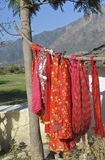 India - washing line. Beautiful red saris hanging out to dry on a washing line. Northern India royalty free stock images
