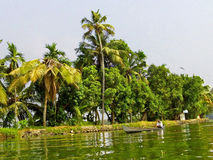 India. Waterman in backwaters of Alappuzha, Kerala, india Stock Image