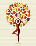 India yoga fruit tree. Human shape yoga exercise tree fruits design. Vector file layered for easy manipulation and custom coloring stock illustration