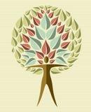 India yoga leaf tree Royalty Free Stock Image