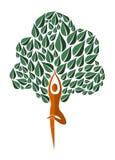 India yoga leaf tree Stock Photos