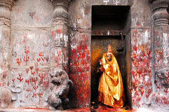 India zuiden-India: De Tempel van Madurai Sri Meenakshi Stock Fotografie