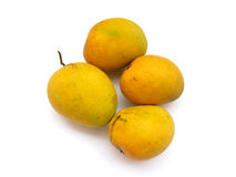 Indian Alphonso Mangoes. Mangoes are called as king of fruits in india and alphonso mangoes rank first among all variety Royalty Free Stock Images
