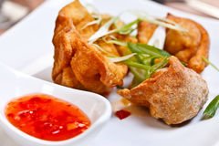Indian appetizer - Crispy chicken wontons Stock Images