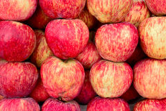 Indian-Apple Stock Image