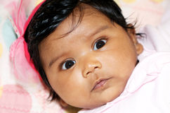 Indian Baby Girl. Headshot portrait of strikingly gorgeous two month Indian baby girl, with black hair and bright bink bow, staring right at the camera Royalty Free Stock Photo