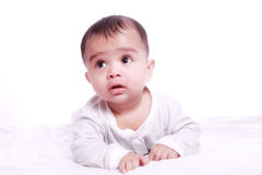 Indian Baby Portrait Stock Image