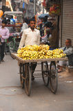 Indian banana salesman. Delhi, India. Royalty Free Stock Image