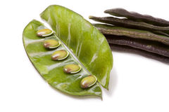 Indian Bean Royalty Free Stock Photos