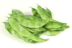 Indian Bean Stock Photography