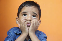 Indian Boy Looking up. Portrait of Indian Cute Boy Looking up with Expression Stock Image