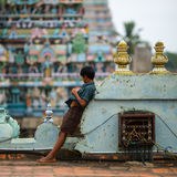 Indian boy on the roof of the temple Royalty Free Stock Photos