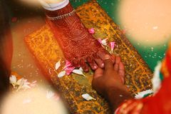 Close up of Indian bride and groom holding hands after the wedding ceremony,. Indian bride and groom holding hands after the wedding Royalty Free Stock Image