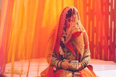 Indian bride inside veils Stock Images