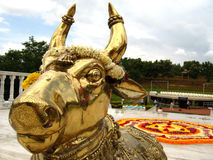 Indian Bull God. A Gold plated Indian Bull God of the Hindu religion Stock Images