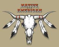 Indian Bull Skull Stock Photo