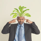 Indian businesspeople head growing plant Stock Photography