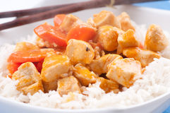 Indian butter chicken with carrots  over white rice Royalty Free Stock Image