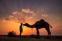 Indian camel sunset stock photos