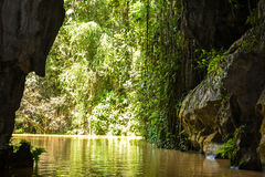 Indian cave river. Vinales, Cuba. Indian cave river, among nature stock photo