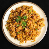 Indian Chicken Biriyani Curry Food Royalty Free Stock Photos