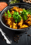 Indian Chicken and Coriander Stock Photos