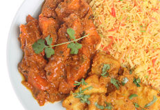 Indian Chicken Curry Royalty Free Stock Photos