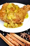 Indian chicken curry Royalty Free Stock Images