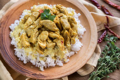 Indian chicken curry with white rice Royalty Free Stock Images