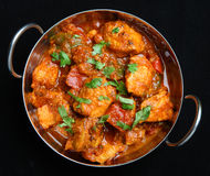 Indian Chicken Jalfrezi Curry Food. Indian chicken jalfrezi curry in a balti dish Stock Images