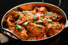 Indian Chicken Jalfrezi Curry Food. Indian chicken jalfrezi curry. Shallow DoF, focus on central chicken piece Stock Image
