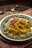 Indian chicken stew. North Indian Goshee curry chicken stew with peppers, coconut milk, chillies and rice Royalty Free Stock Image