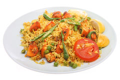 Indian Chicken Tikka Biriani Curry Stock Photography